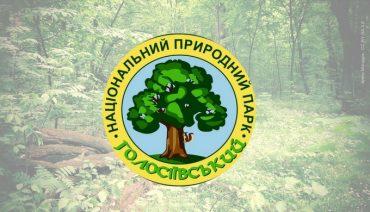 Голосіївський_ліс15