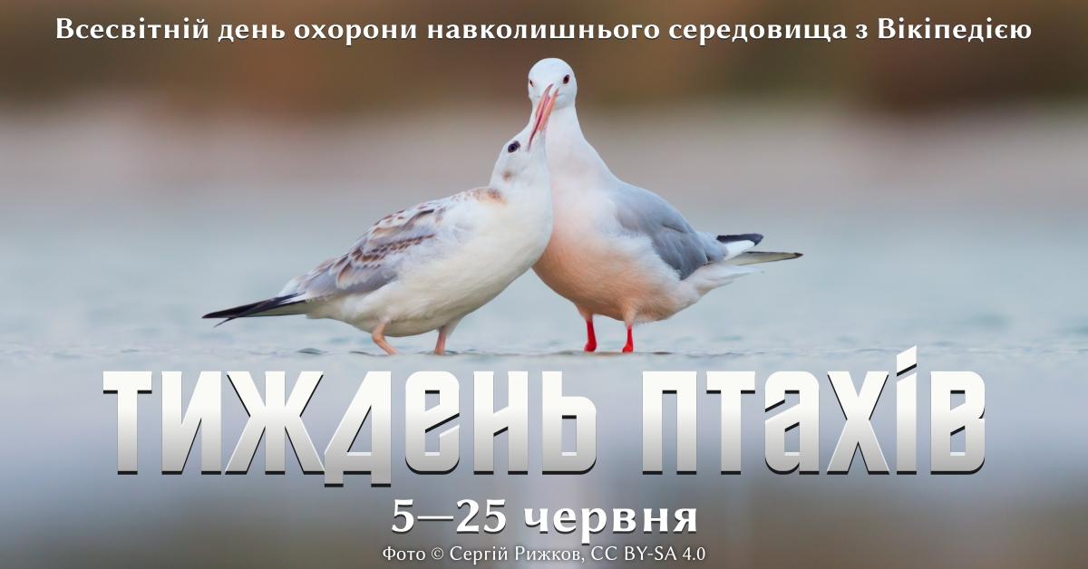 Тиждень птахів: акція у Вікіпедії до Дня охорони довкілля